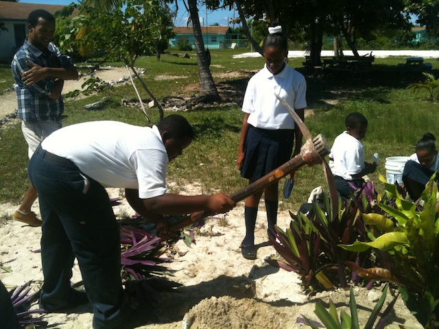 Petron plants native trees as part of a community service project